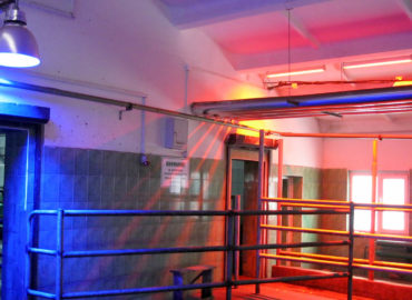 Лазерно-квантовая терапия для животных