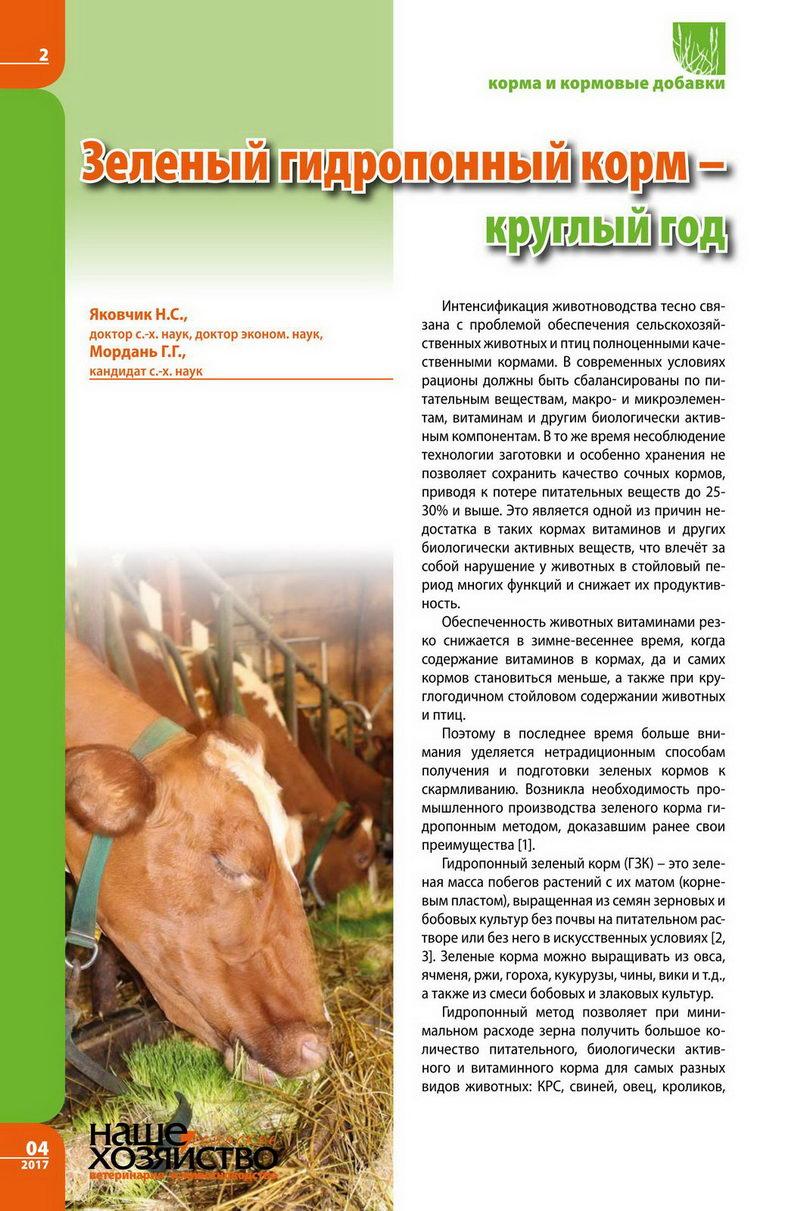Зеленый гидропонный корм 1